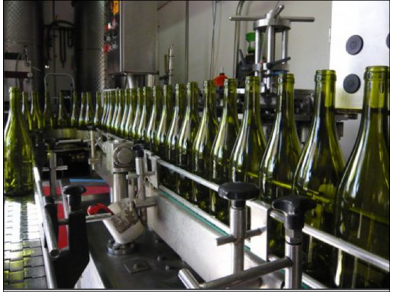Bottling of 2013 Vintage