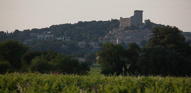 Vue de Chateauneuf du Pape