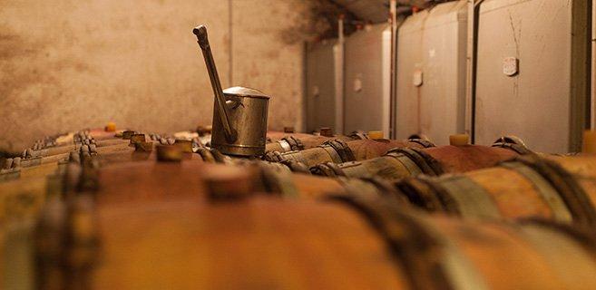 Elevage des syrahs en fût de 1 ou 2 vins